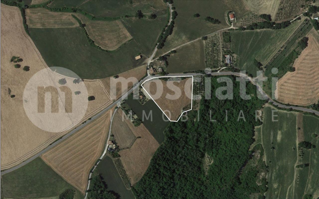 Gagliole vendita terreno agricolo Località Forca - 1