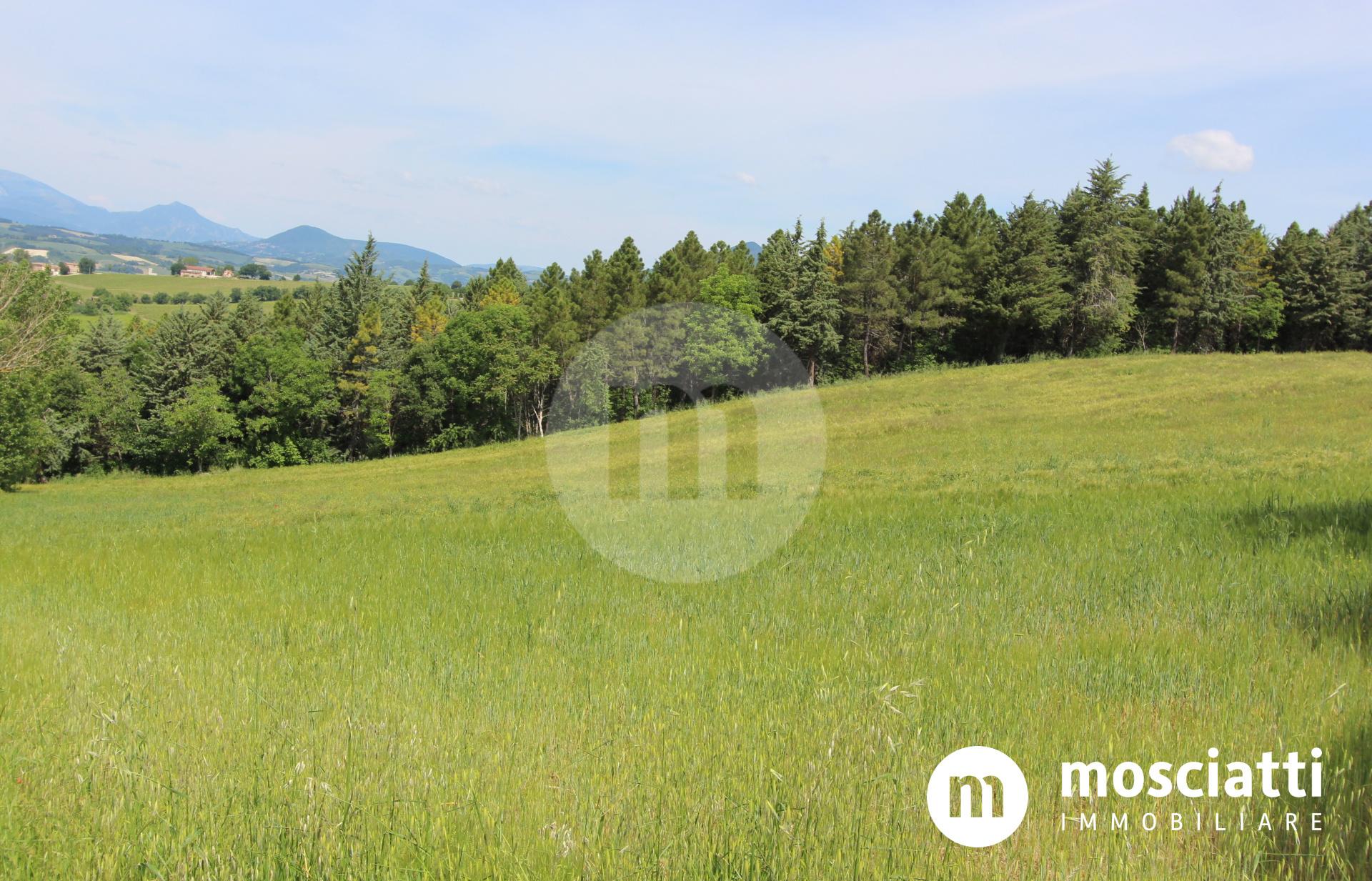 Matelica, Località Balzani, vendesi terreno edificabile residenziale - 1