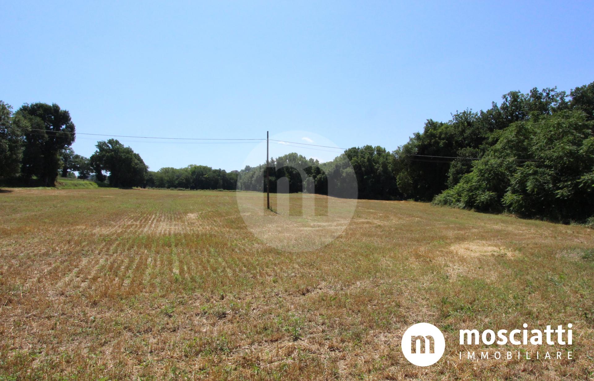 Matelica, Località Fonticelle, vendesi intero casale e terreno - 1